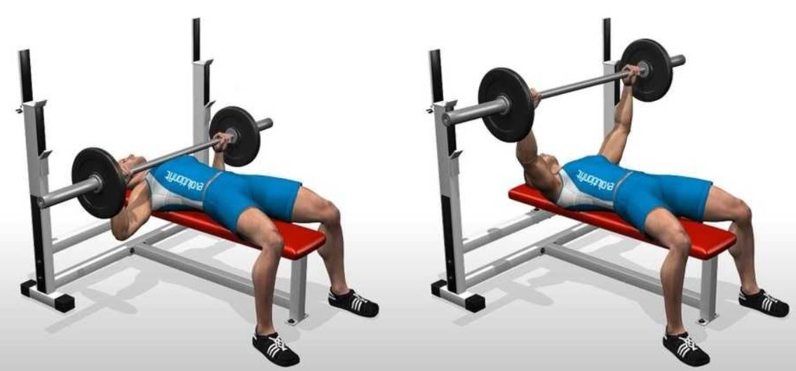 flat bench workout