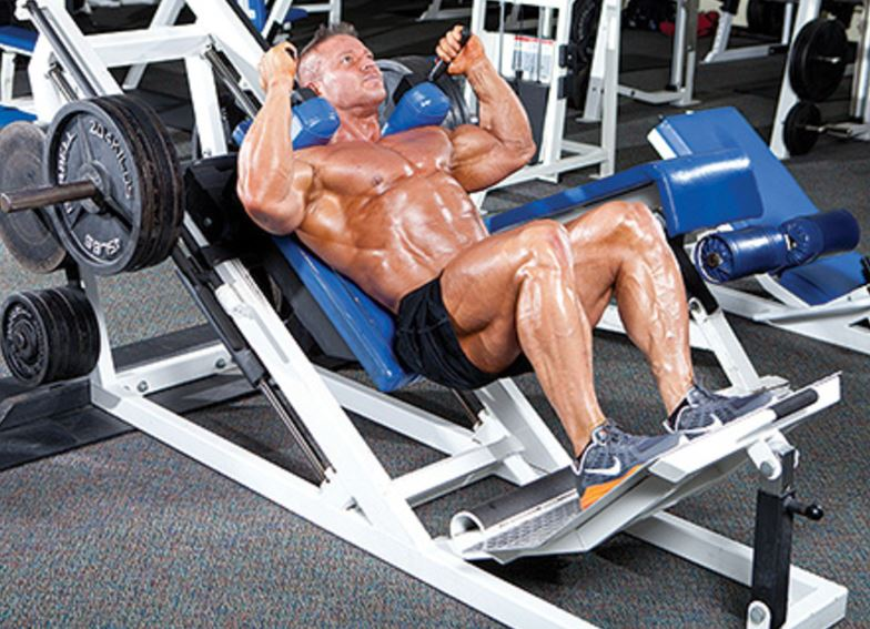 hack squat1