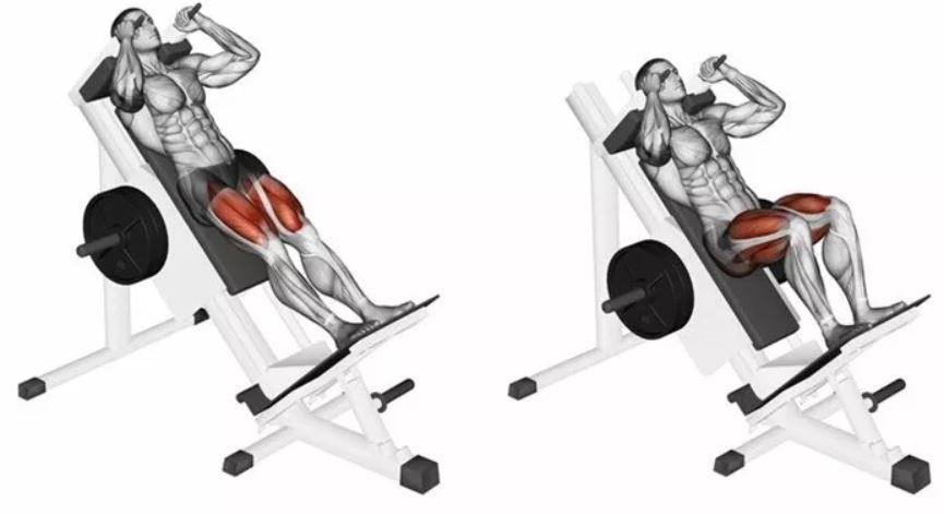 hack squat2