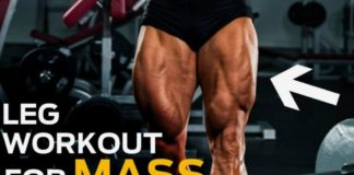 leg workout for men logo