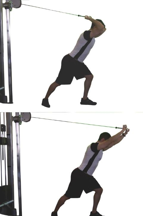 overhead cable triceps1