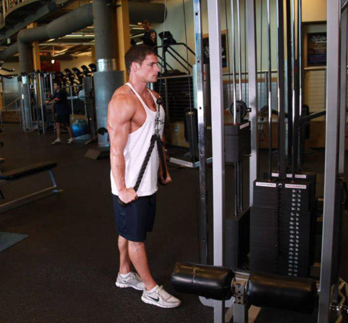 rope triceps pushdown 1