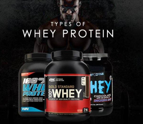 types of whey protein 1