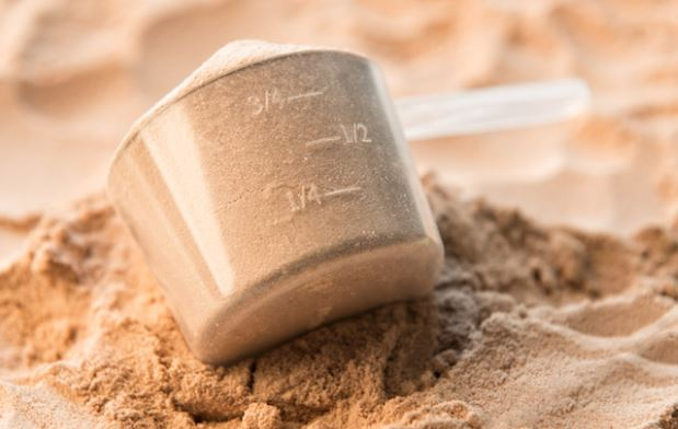 why whey protein is nec