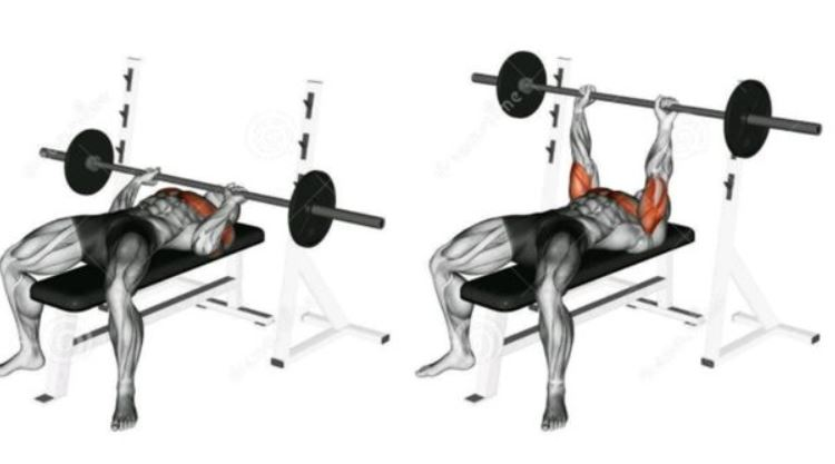 close grip bench press1