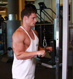 triceps pushdown 1