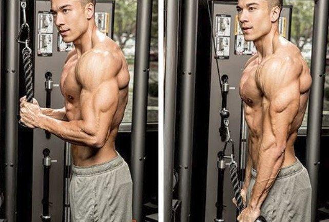 triceps pushdown1