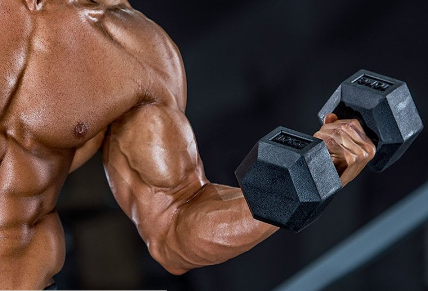 best biceps workout