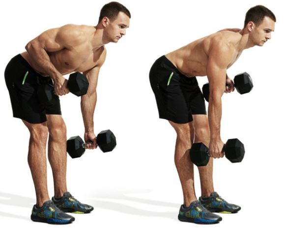 bent over dumbbell