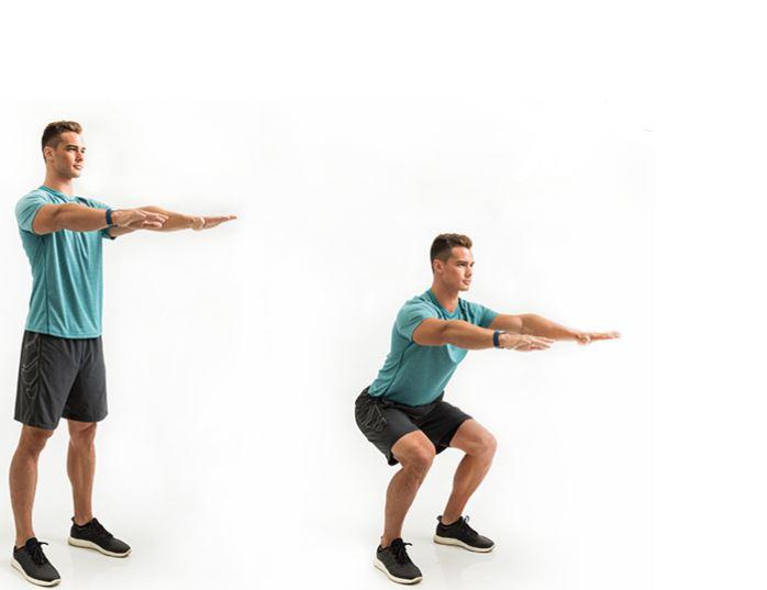 squats new
