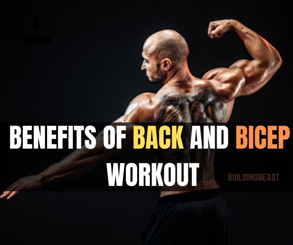Benefits of back and bicep workout