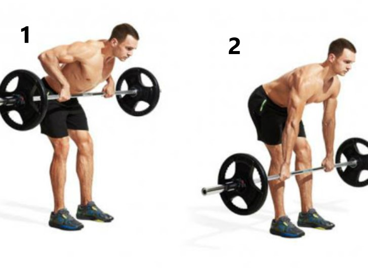 barbell bent over row 1