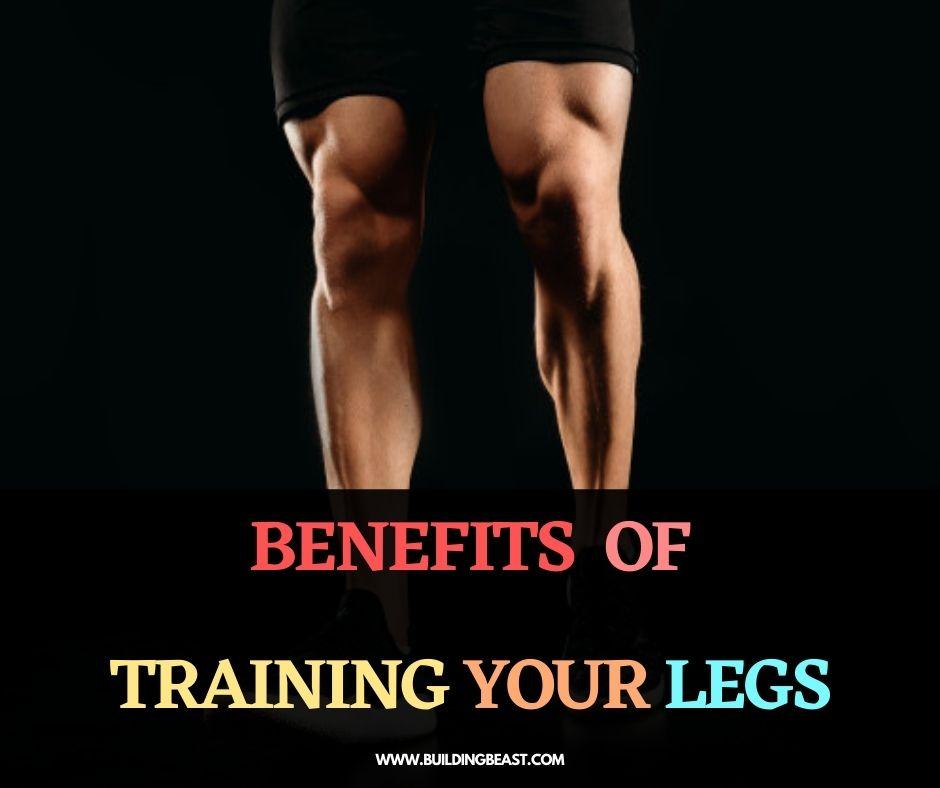 Benefits of muscular legs