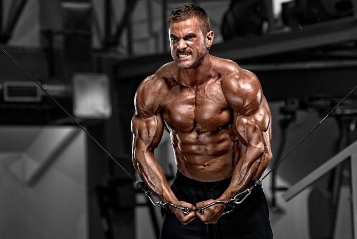 Ultimate chest and shoulder workout routine