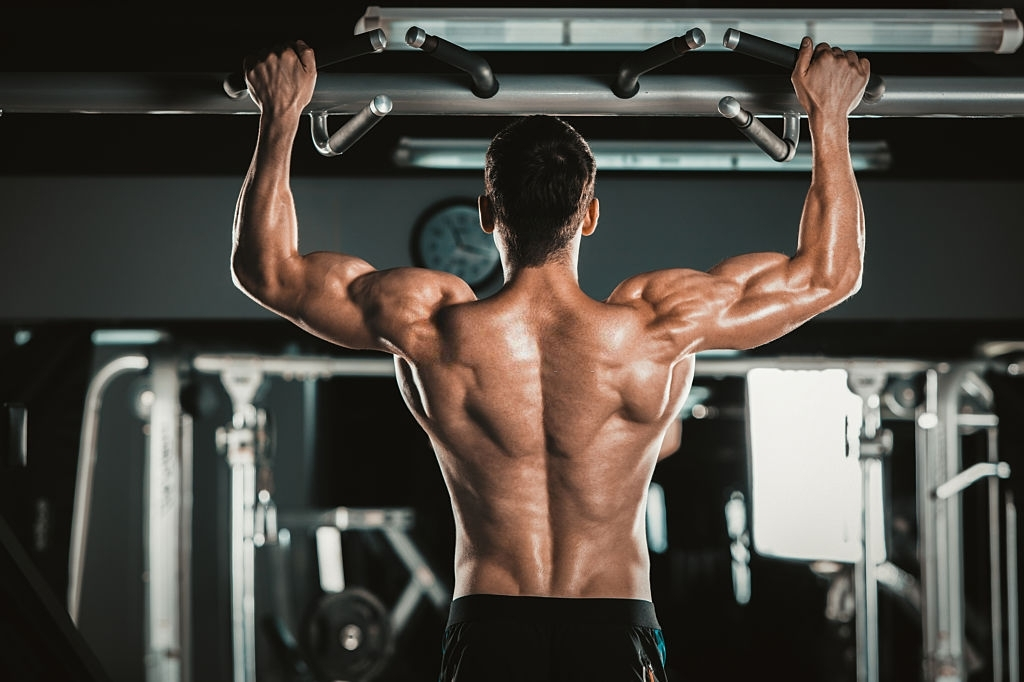 back workout for mass