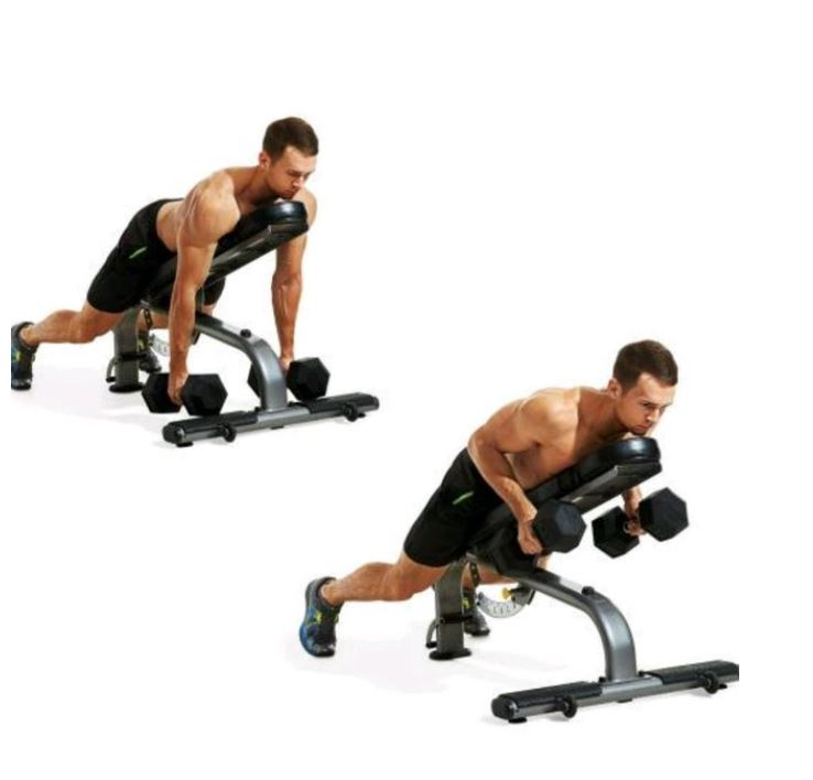 chest dumbbell workout